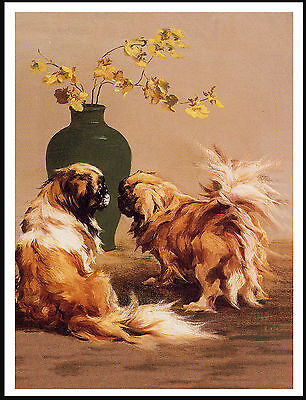 Pekingese Two Dogs And Vase Flowers Lovely Dog Print Poster