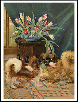 Pekingese Dogs And A Vase Of Tulips Charming Old Style Dog Art Print Poster