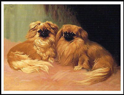 Pekingese Two Little Dogs Charming Image Dog Print Poster