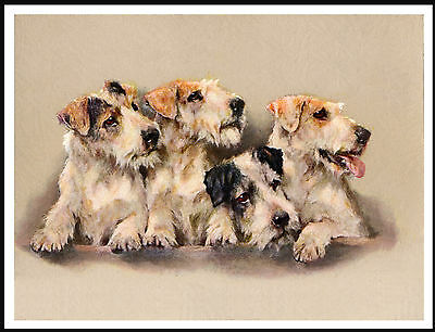 Sealyham Terrier Group Of Dogs Lovely Dog Print Poster