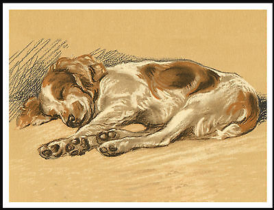 Welsh Springer Spaniel Stretched Out Fast Asleep Charming Image Dog Print Poster