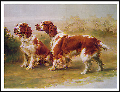Welsh Springer Spaniel Two Dogs Lovely Vintage Style Image Dog Print Poster