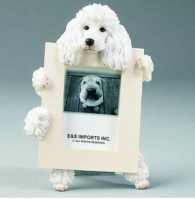 "Poodle (White) Dog Photo Picture Frame Gift Figurine 2-1/2"" X 3-1/2"""