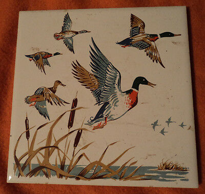 Porcelain Screencraft Ceramic Tile Mallard Duckd flying over cattails 6 x 6