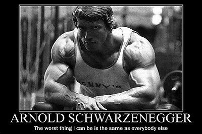 "Arnold Schwarzenegger Motivational Quotes Poster fabric silk 24""x36"" print 10"