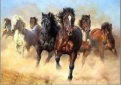 MODERN ABSTRACT HUGE CANVAS ART Hand OIL PAINTING:horse(no framed)005