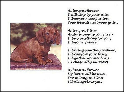 """Beautiful RED DACHSHUND print """"AS LONG AS FOREVER"""" art poem dog Doxie puppy NEW!"""
