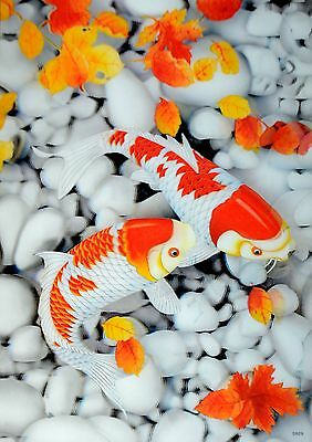 NEW 3D Pictures/Posters Lenticular Art picture print Wall Decor Fish