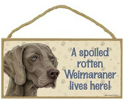 "Spoiled Rotten Weimaraner Lives Here Sign Plaque Dog 10"" x 5"" sign pet gifts"