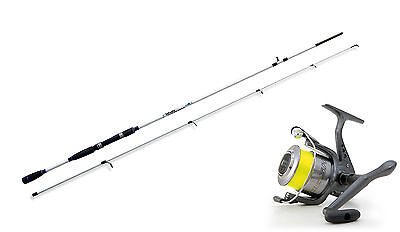 Lineaeffe Saltwater spinning rod &  SK3 40FD Reel combo Choose from 4 sizes.
