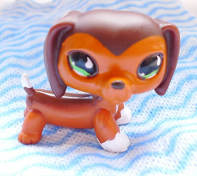 k5 littlest pet shop #675 Aftermarket # special edition brown Dachshund dog