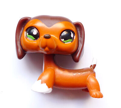 ,k5 littlest pet shop #675 Aftermarket @ special edition brown Dachshund dog