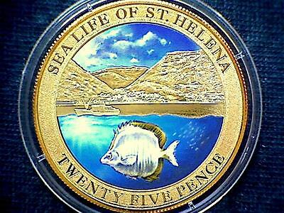 SAINT HELENA 2013 25 PENCE, SEA LIFE SERIE, FISH, COLOURED Cu-Ni GOLD PLATED