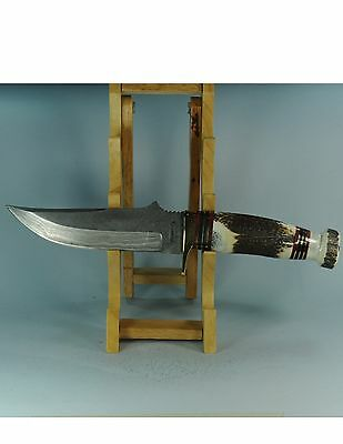 """MARBLES #MR804  11-1/2"""" DAMASCUS HUNTER FIXED BLADE KNIFE WITH STAG HANDLE"""