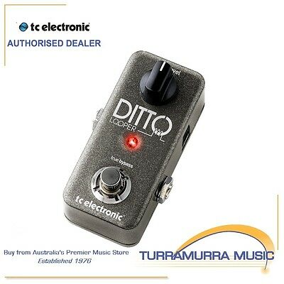 TC Electronic Ditto Looper - Guitar Looper Pedal
