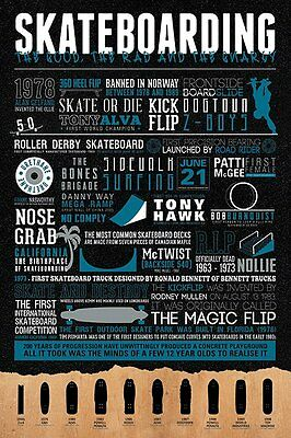 Skateboarding - Infographic POSTER 61x91cm NEW * Skate Or Die Cool Facts etc.