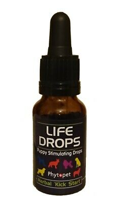 Phytopet Puppy Stimulating Life Drops 10ml herbal kick start