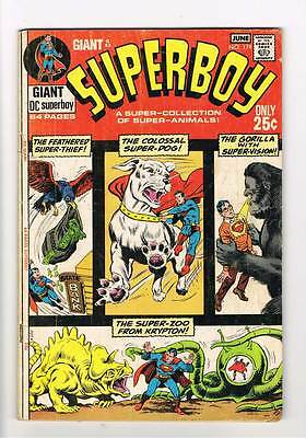 Superboy # 174 Colossal Super-Dog ! 64 page issue grade 4.5 scarce hot book !!