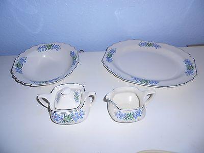 WS George Blue Flora Lido Scalloped Silver Trim Serving Pieces USA #196A