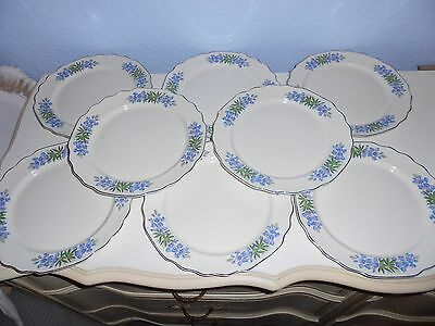 "8 WS George Blue Flora Lido Scalloped Silver Trim 9 1/4"" Dinner Plates USA #196A"