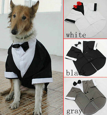 Large Breed Dog Black, White, Grey Wedding Tuxedo 4 Sizes - 100% Cotton