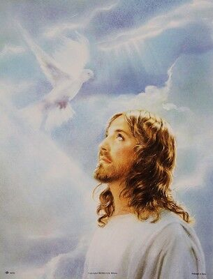 "13 1/2"" x 17 1/2"" Religious Art Poster BAPTISM OF JESUS Dove of the Holy Spirit"