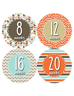 Pregnancy Baby Bump Week Stickers Maternity Weekly Expectant Mom Sticker #918