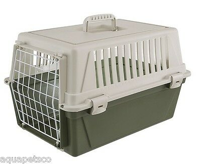 Olive/Cream Cat Carrier Kitten Puppy Dog Pet Safe Travel Carry Crate