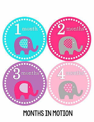 Baby Girl Monthly Baby Stickers 12 Month Milestone Birthday Sticker Photo #085