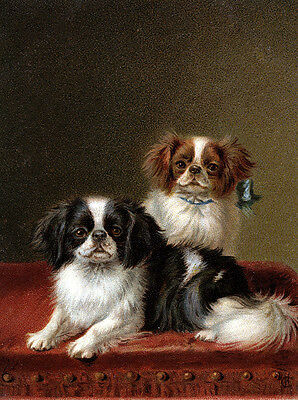 Japanese Chin Charming Dog Greetings Note Card Two Beautiful Sitting Dogs