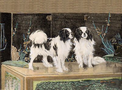 Japanese Chin Charming Dog Greetings Note Card Beautiful Dogs On Oriental Chest
