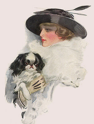 Japanese Chin Charming Dog Greetings Note Card Glamour Lady With Large Black Hat