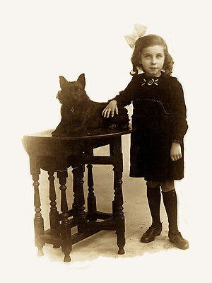 Schipperke Charming Dog Greetings Note Card Cute Little Girl With Dog On Table