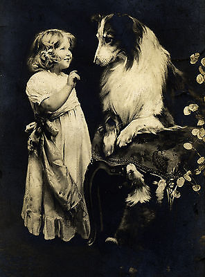 Rough Collie And Little Girl Charming Dog Greetings Note Card