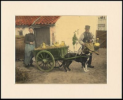 Bernese Mountain Dog And Milk Cart Period Style Print Mounted Ready To Frame