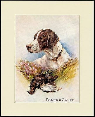 Pointer And Grouse Great Dog Print Mounted Ready To Frame