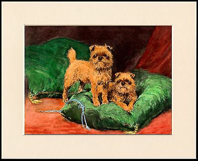 Brussels Griffon Little Dogs On A Green Cushion Dog Print Mounted Ready To Frame
