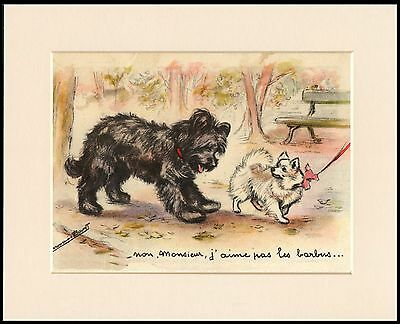 Briard And Pomeranian Lovely Dog Print Mounted Ready To Frame