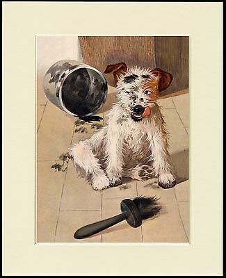 Jack Russell Wire Fox Terrier Cute Little Dog Print Mounted Ready To Frame
