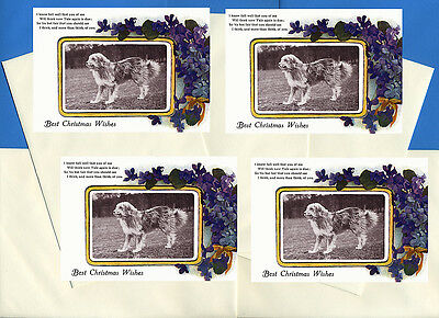 Bearded Collie Pack Of 4 Cards Dog Print Greeting Christmas Cards