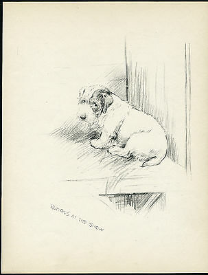 SEALYHAM TERRIER ON BENCH AT SHOW LOVELY OLD 1930'S DOG ART PRINT by KF BARKER