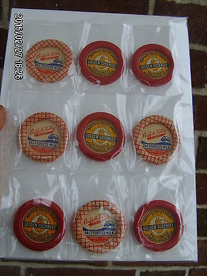 lot of (9) vintage BUFFALO VALLEY DAIRY Milton PA milk bottle caps