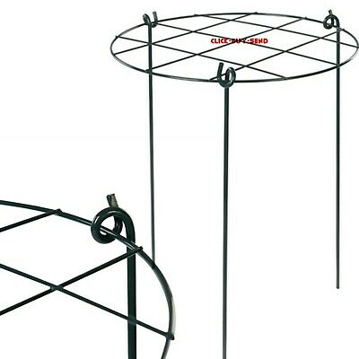 Conicle 3 Ring Garden Plant Plants Support 450 Mm Supports Vegetables Veg New