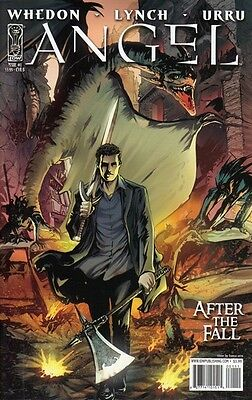 Angel - After the Fall (2007-2011) #1 (Cover B)