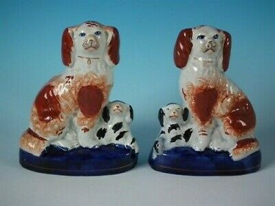 Pair Staffordshire seated russet spaniels with pups