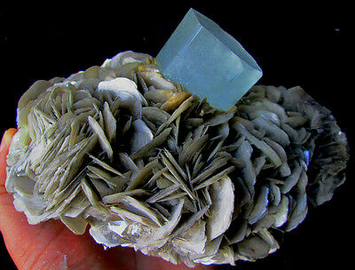 WOW 1810 GRAMS SUPER TOP QUALITY STUNNING SKY BLUE COLOR AQUAMARINE W/MUSCOVITE