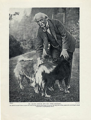 Prime Minister Lloyd George And His Chow Chow Dogs Original Print Page From 1934