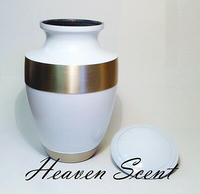 1032 White & Brass Adult Human Cremation Ashes Urn Container Jar Full Size,