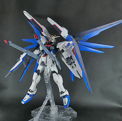 Bandai MG 1/100 Freedom Gundam built model kit SEED Kira Yamato Gunpla Figure