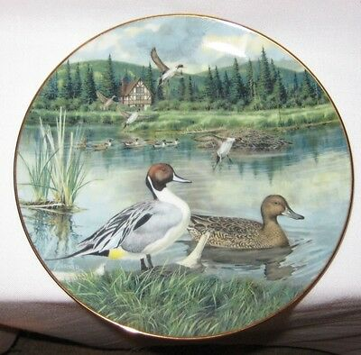"""""""The Pintail"""" 1986 Limited Edition Collector's Plate by Knowles - Pre-Owned"""